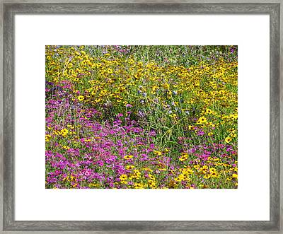Natural Beauty Framed Print by Tim Townsend