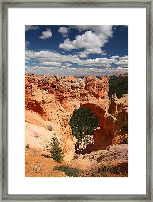Natural Bridge In Bryce Canyonnational Park Framed Print