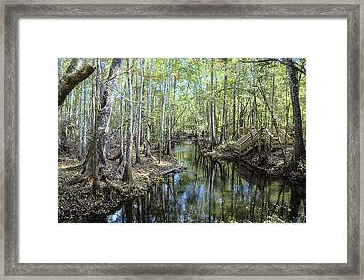 Natural Bridge Springs Framed Print by Frank Feliciano