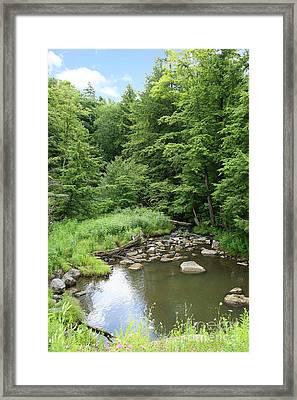 Natural Creek Landscape Framed Print by Suzi Nelson