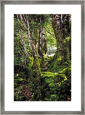 Natural Emeralds. I Wicklow. Ireland Framed Print by Jenny Rainbow