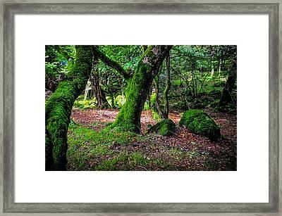 Natural Emeralds II. Wicklow. Ireland Framed Print by Jenny Rainbow