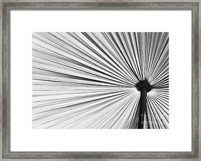 Natural Expolsion Framed Print by Sabrina L Ryan