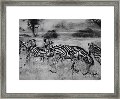Natural Habitat  Framed Print by Laneea Tolley