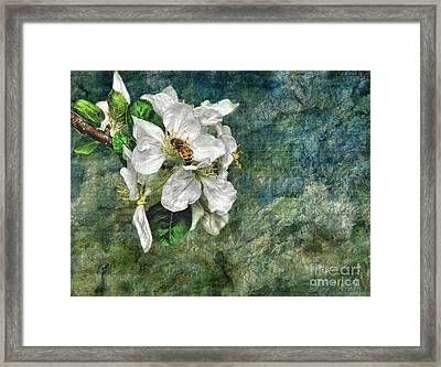 Natural High Framed Print