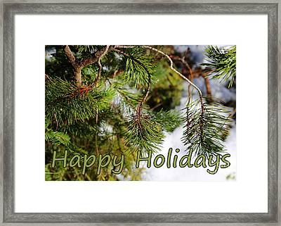 Natural Holiday Card Framed Print by Carol Groenen