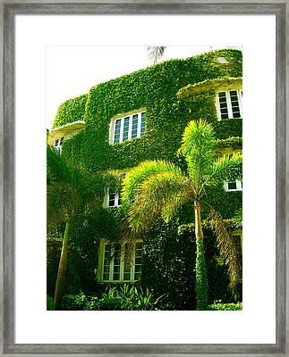 Natural Ivy House Framed Print