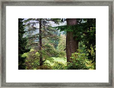 Natural Magnetism. Scotland Framed Print by Jenny Rainbow