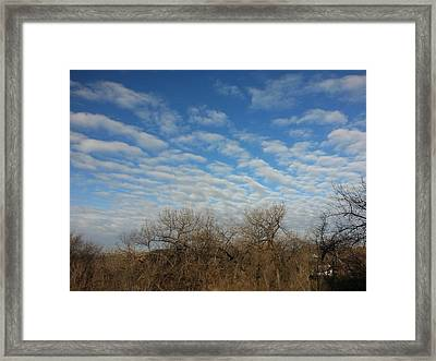 Super Natural Framed Print