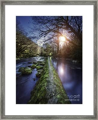 Natural Path Between Two Streams Framed Print by Evgeny Kuklev