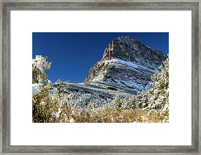 Natural Picture Frame Framed Print by Adam Jewell