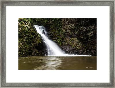 Natural Pool 1 Framed Print by Bill Cantey