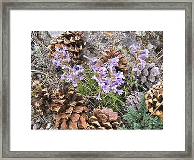 Natural Recycling Framed Print