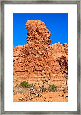 Natural Sculpture Framed Print by John M Bailey