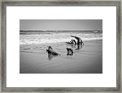 Framed Print featuring the photograph Natural Sculpture by Lana Enderle