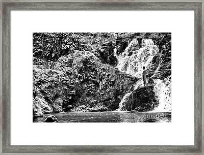 Natural Setting Framed Print by John Rizzuto