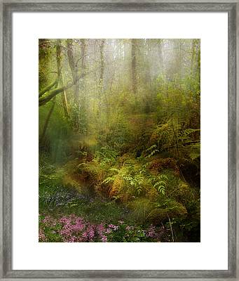 Natural State Framed Print by Mary Hood