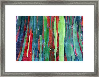 Natural Tree Framed Print