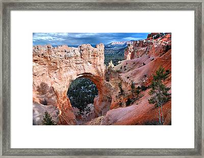 Natural Wonders Framed Print