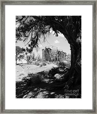 Natural Wood Frame Bw Framed Print by Mel Steinhauer