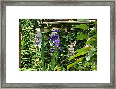 Naturally Sculptured Beauty Framed Print