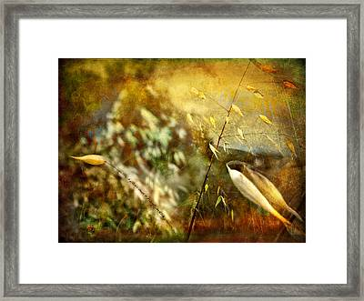 Framed Print featuring the photograph Nature #13. Calling You by Alfredo Gonzalez