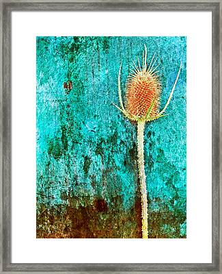 Framed Print featuring the digital art Nature Abstract 13 by Maria Huntley