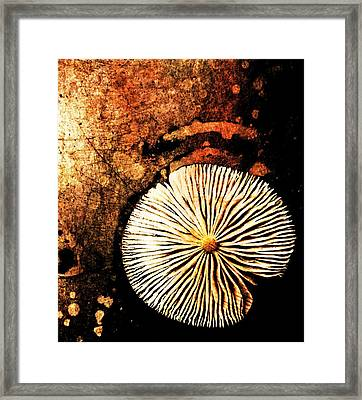 Framed Print featuring the digital art Nature Abstract 14 by Maria Huntley