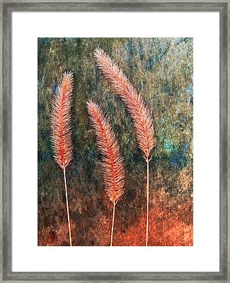 Framed Print featuring the digital art Nature Abstract 15 by Maria Huntley