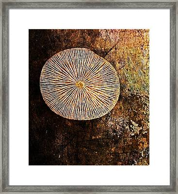 Framed Print featuring the digital art Nature Abstract 22 by Maria Huntley