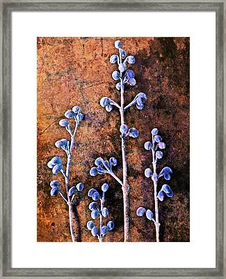 Nature Abstract 25 Framed Print