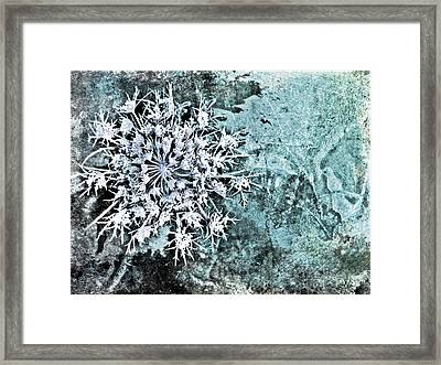 Nature Abstract 28 Framed Print