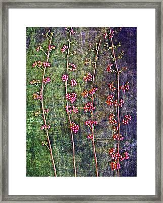 Nature Abstract 43 Framed Print