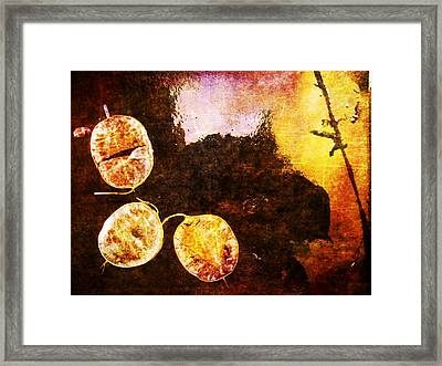 Framed Print featuring the digital art Nature Abstract 6 by Maria Huntley