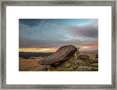 Nature Art Framed Print