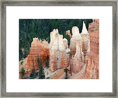 Nature Art Sculpture Framed Print by Judith Russell-Tooth