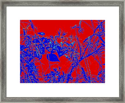 Framed Print featuring the photograph Nature Arti  Image by Yolanda Rodriguez