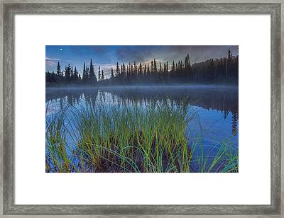 Nature Awakes Framed Print