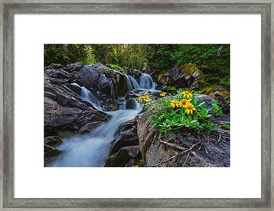 Nature Boutique Framed Print