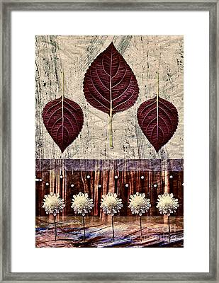 Nature Canvas - 01m4 Framed Print