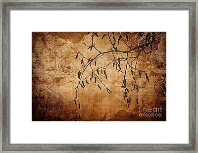 Nature Canvas  Framed Print by Andrea Kollo