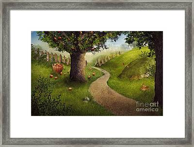 Nature Design - Apple Orchard Framed Print by Mythja  Photography