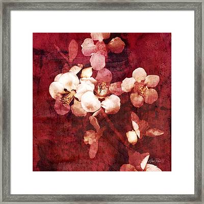 Nature Flowers Blossom Time  Framed Print by Ann Powell