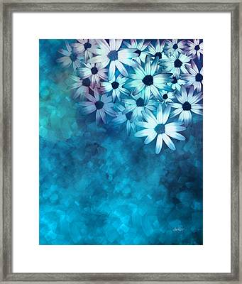 nature - flowers- White Daisies on Blue  Framed Print by Ann Powell