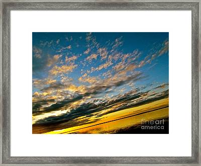 Nature Grasping Framed Print by Q's House of Art ArtandFinePhotography