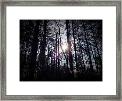 Nature Hike Framed Print