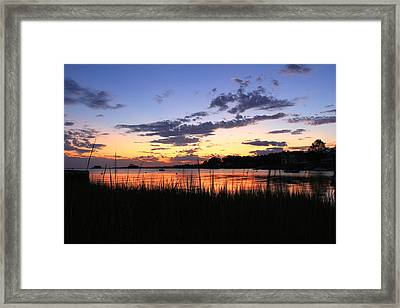 Nature In Connecticut Framed Print by Mark Ashkenazi