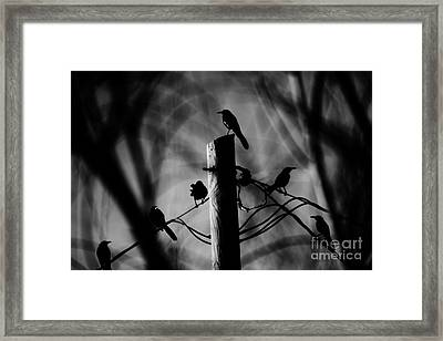 Framed Print featuring the photograph Nature In The Slums by Jessica Shelton