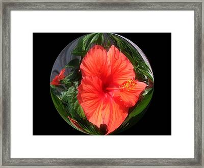 Nature Inside The Glass Ball Digital Art By Saribelle Rodriguez Framed Print by Saribelle Rodriguez
