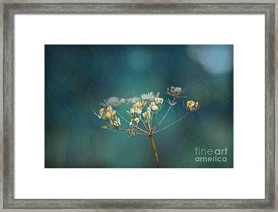 Nature Is Art Framed Print by Liz  Alderdice